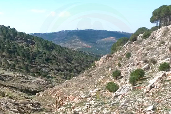 Hiking to Fawwara, Al-Chouf